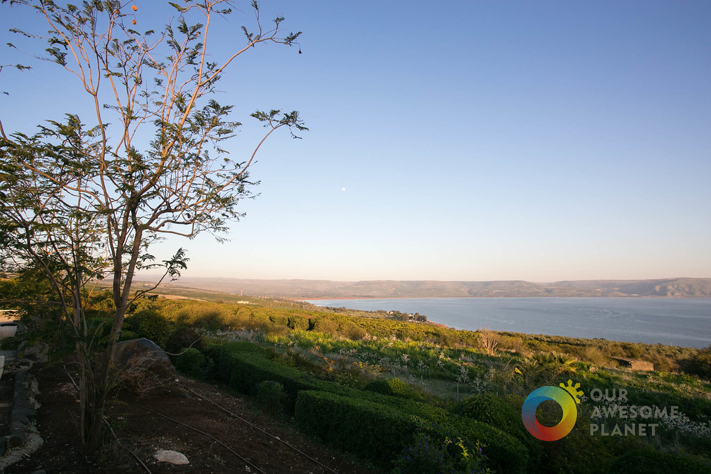 Day 2- Mount of Beatitudes - Our Awesome Planet-24.jpg