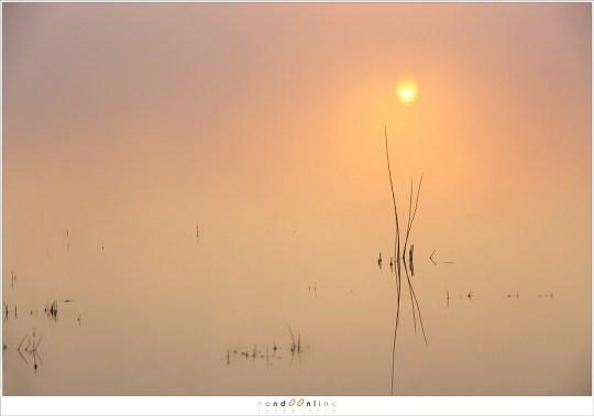 De mist speelt met het licht en landschap. In het water reflecteert de zon
