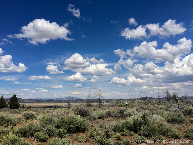 Clouds Over Scrub Brush