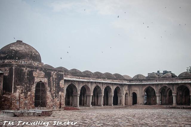 Begumpur Masjid (6)