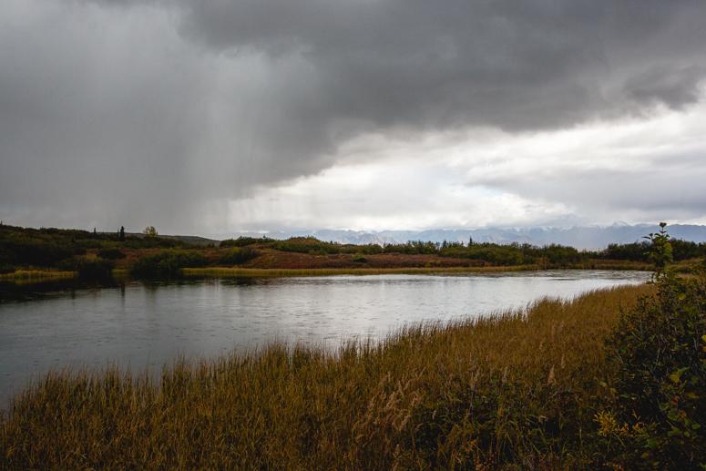 wonder lake campground denali national park