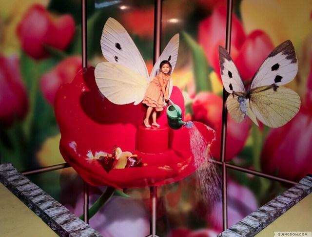 Joyous Visual Trick Arts Gallery