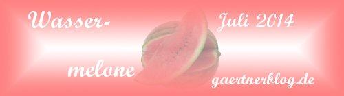 Garten-Koch-Event Juli 2014: Wassermelone [31.07.2014]
