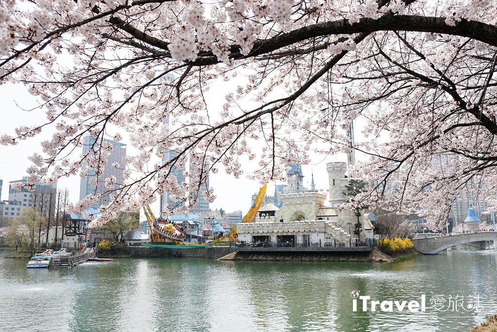 首尔赏樱景点 乐天塔石村湖 (40)