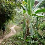 06 Viajefilos en Laos, Vang Vieng  051