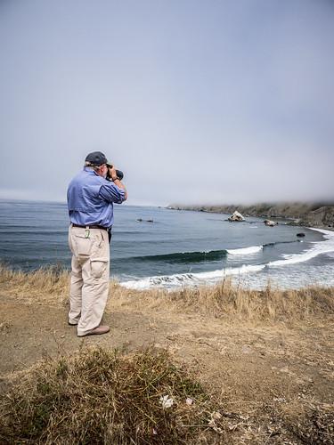 Coastal Redwoods and Fog-029