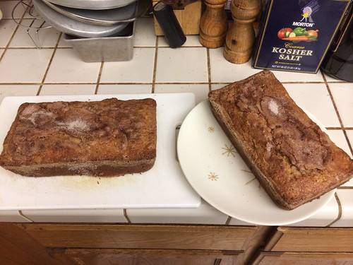 Apple cinnamon raisin Amish Friendship Bread