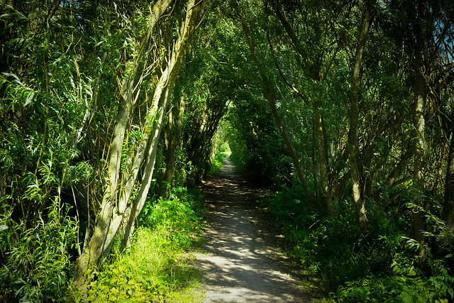 Sumptuous cycle route