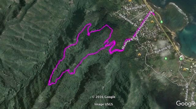 Hauhula Trail2