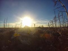 Purcells Cove Backlands - Flat Lake Trail