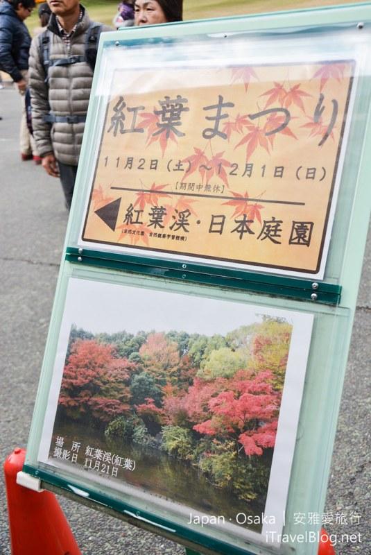 大阪赏枫 万博纪念公园 14