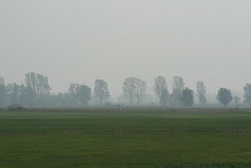Vorpommersche Boddenlandschaft