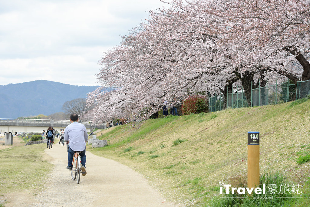 京都脚踏车出租 Rent a cycle EMUSICA (27)