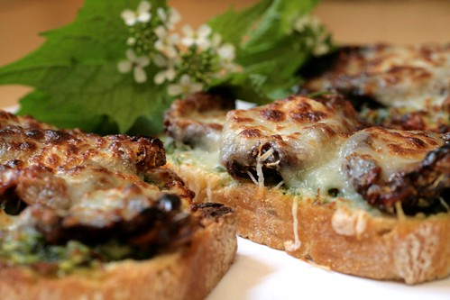 Garlic Mustard Pesto and Oven Dried Tomato Bites
