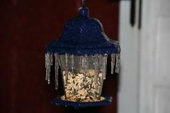 2008-12-12-ice-storm-night5-birdfeeder