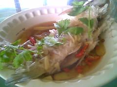 Steamed ikan semah 2