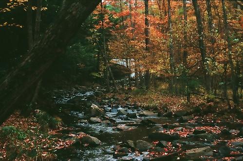 In the Adirondacks