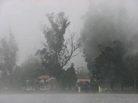 mist on the lake kodai 240508