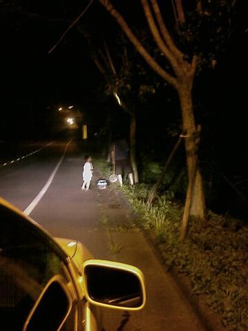 暗夜抓甲蟲