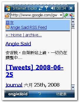 google-angie-01.jpg