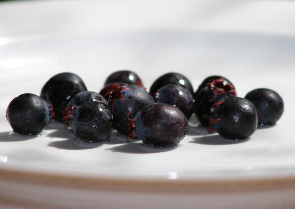 western serviceberries