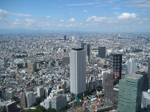 view from tokyo metropolitan government offices