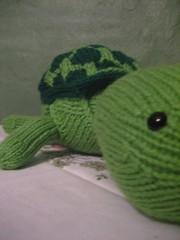 Yurdel the Turtle
