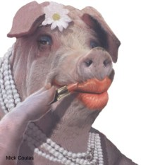 Lipstick on a Pig by emilylt