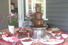 Chocolate Fountain First Birthday Party