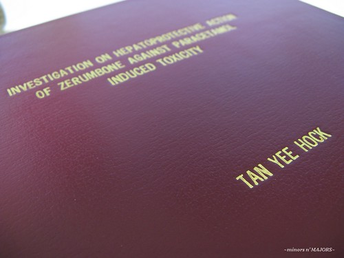 Thesis done 03