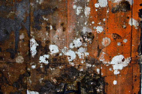 Patterns of dereliction