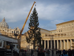 Christmas in the Vatican City by Jacob Wighton