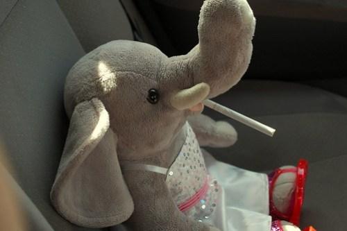 Ella Smokes