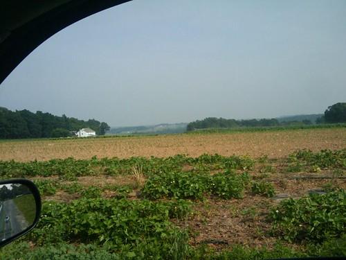 Hidden Acres Amish farm