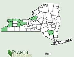 Pawpaw Range Map NYS