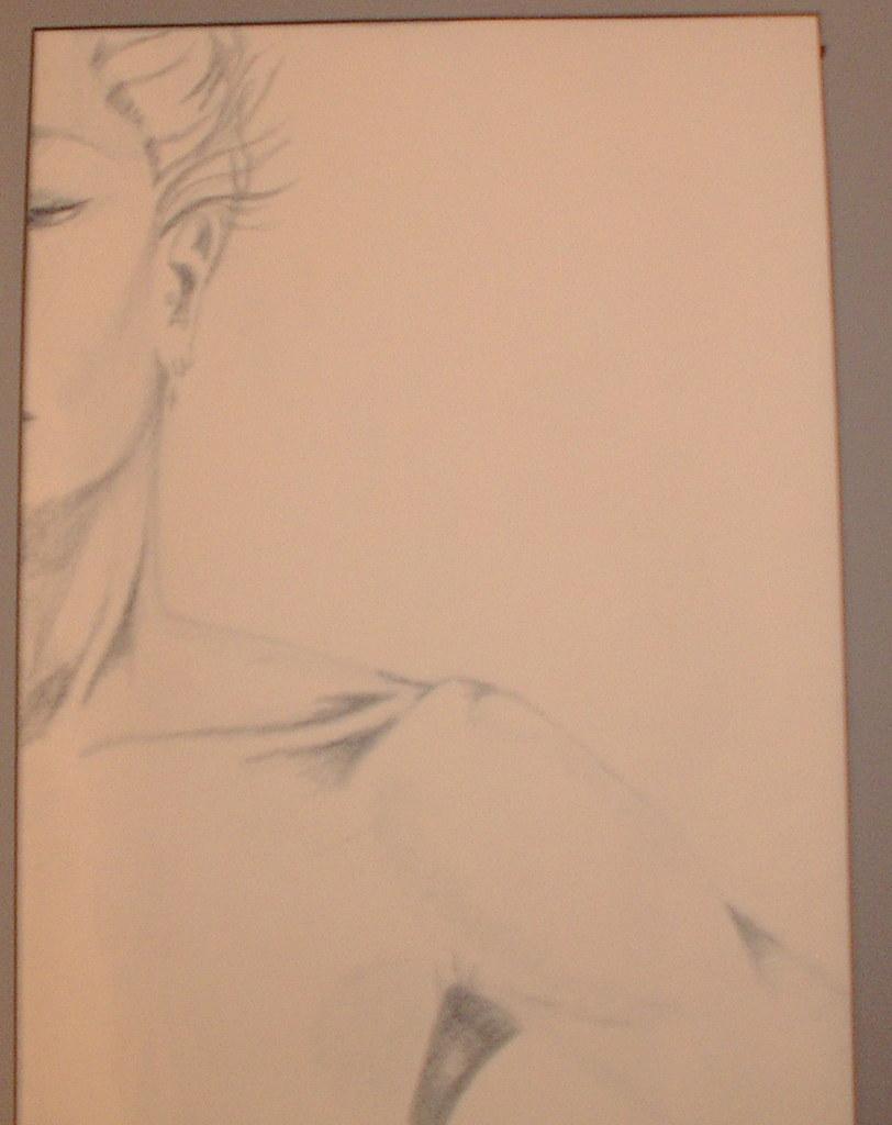 shoulder study
