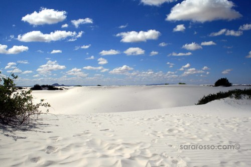 Looking across the White Sands National Monument