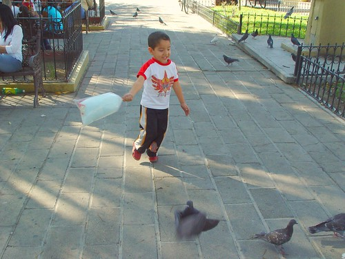 This kid was fantastic.  He kept chasing the pigeons with his cotton candy, running in circles with a huge smile on his devilish little face.