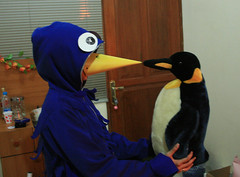 blue bird and pingu