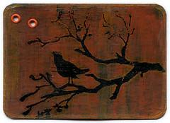 Bird 3/3