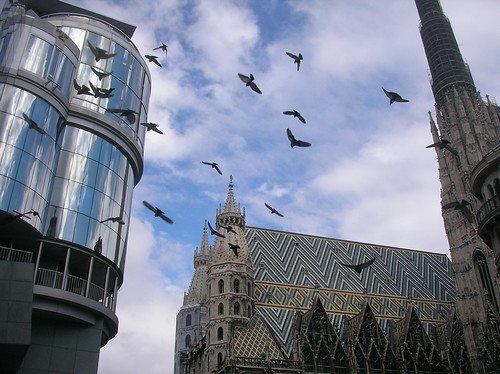 Wien 2008-04