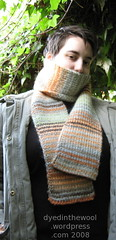 stripe scarf4