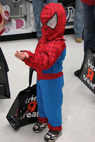 Spider-Bug webbing
