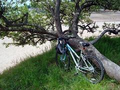 Biking Season Has Arrived