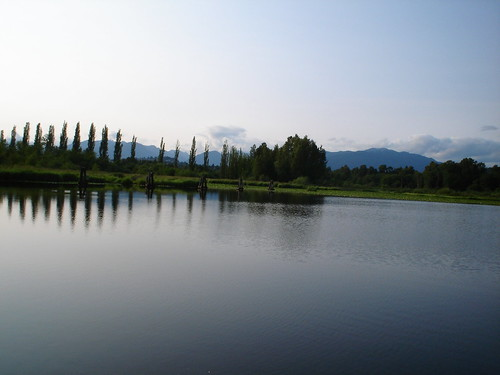Burnaby Lake Park