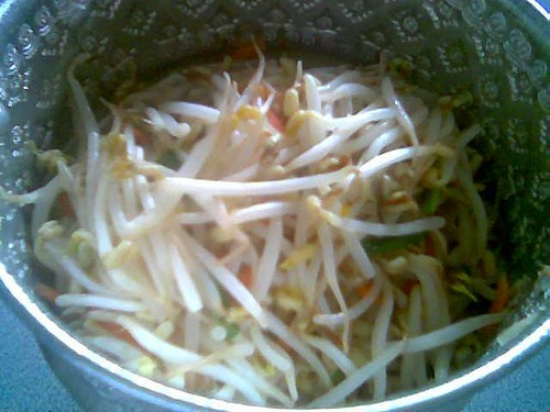 Tiffin carrier - fried bean sprouts