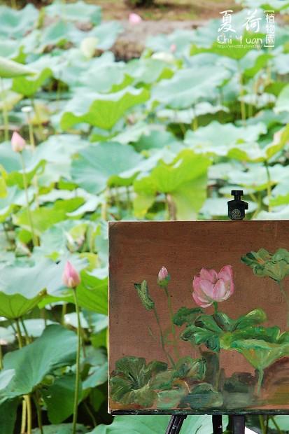 台北植物園02.jpg
