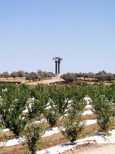Cherry and olive orchards, with the monument that serves as the kibbutzs logo in the background