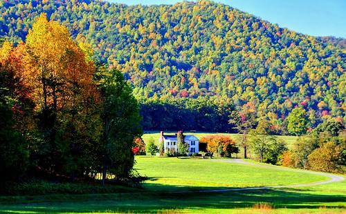 A Sunny Autumn Day