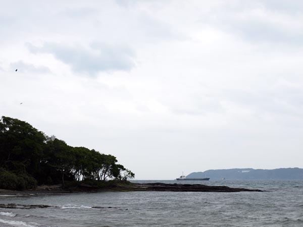 館山 沖ノ島 4
